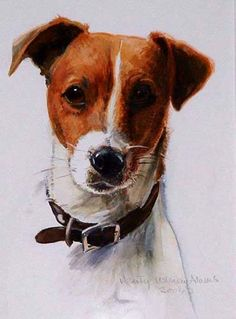 awesome style, jack russell?