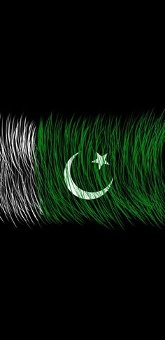 Pakistan Independence Day Images, Happy Independence Day Images, Independence Day Wallpaper, Pakistan Flag Hd, Pakistan Zindabad, Pakistan Defence, Pakistan Travel, 14 August Pics, 6 September