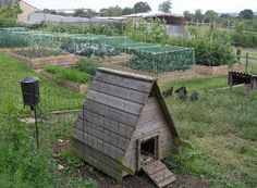 Part of the smallholding