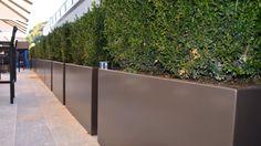 alugefässe, pflanzengefässe nach mass, alu massgefässe, aluminiumgefässe, alupflanzgefässe, alu pflanzgefässe, aluminium gartengefässe, pflanzgefässe, moderne gartengefässe, gartentopf, meintopf, pflanzgefässe outdoor, spezialist für pflanzgefässe, pflanzgefässe terrasse, Aluminium Gefäße, aluGefäße, outdoorgefässe, gartengefässe Aluminium, Modern, Plants, Window Boxes, Balcony, Terrace, Garten, Dekoration, Trendy Tree