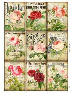 Roses and Romance Digital Collage Sheet Instant by GalleryCat