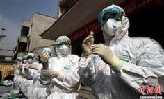 Gripe aviária na China
