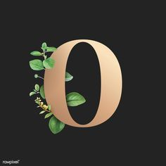 Botanical capital letter O vector | premium image by rawpixel.com / Aum / Donlaya / Kappy Kappy / manotang Pretty Letters, Gold Letters, Monogram Letters, Graphic Design Fonts, Lettering Design, Aesthetic Letters, Alphabet Capital Letters, Stylish Alphabets, Typography Alphabet