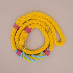 Pineapple Yellow rope leash. Cruiser design by Lasso.
