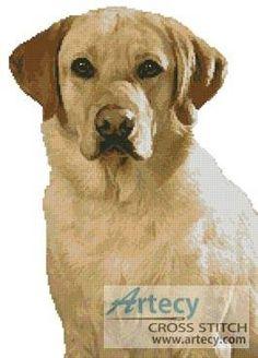 Golden Labrador cross stitch pattern.