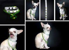 Les chiens branchés s'habillent en Made in Dog
