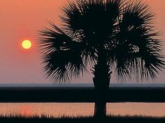 Locale | Beaufort SC Financial Overview