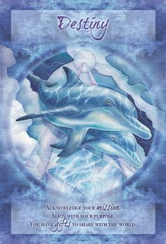 Jody Bergsma Share your gifts Dolphins Ocean Tarot and oracle cards - Trend Lightworker Quotes 2019 Oracle Tarot, Angel Cards, Card Reading, Spirit Animal, Dolphins, Prints, Affirmations, Prayers, Universe