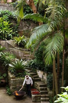 Fun Backyard Landscaping Idea How About An Exotic, Tropical Backyard Resort 23 - topzdesign . Tropical Garden Design, Tropical Backyard, Tropical Landscaping, Tropical Plants, Backyard Landscaping, Fun Backyard, Landscaping Ideas, Jungle Gardens, Landscape Design Plans