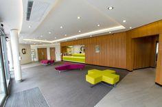 Griffon Studios Battersea, London Accommodation| Gradpad