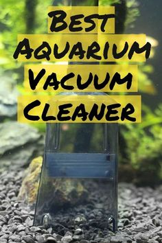 Vacuum cleaners for your aquarium can be a detailed decision to make, check out our tips on size, suction, and more to choose the correct one. Aquarium Set, Aquarium Design, Planted Aquarium, Aquarium Ideas, Saltwater Tank, Saltwater Aquarium, Freshwater Aquarium, Reptiles, Amphibians