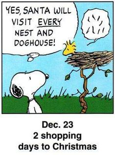 Snoopy and Woodstock Snoopy Cartoon, Snoopy Comics, Peanuts Cartoon, Peanuts Snoopy, Cartoon Pics, Cute Cartoon, Peanuts Comics, Christmas Comics, Peanuts Christmas