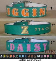 Green-Leather-Dog-Collar-Unique-Dog-Collars-Large-Dogs-Custom-made-Collar