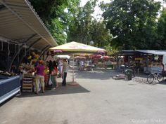 Auf dem Markt in Pula findet man immer frische Früchte und frisches Gemüse