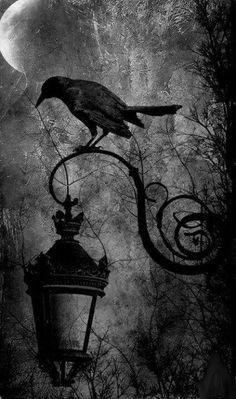 Candle in the Dark fantasy skull skeleton lowbro. -A Candle in the Dark fantasy skull skeleton lowbro. Imagenes Dark, Candle In The Dark, Art Noir, Arte Obscura, Crows Ravens, Fantasy Kunst, Gothic Fantasy Art, Dark Gothic Art, Fantasy Fairies