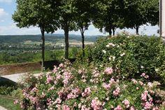 Den Frühling erleben - Klostergärten in Niederösterreich  ... #frühling #klostergärten