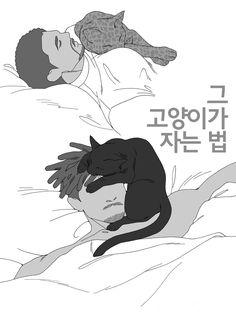 """존봉커스 on Twitter: """"sleeping cat(^・ェ・^) #killchalla #tmonger… """" Marvel 3, Captain Marvel, Marvel Universe, Erik Killmonger, Thor 2, Black Panther Marvel, The Dark World, Incredible Hulk, Marvel Avengers"""