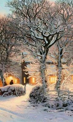 In the gray shadows of Winter the evening indoor lights reach out and touch the snow. Winter Love, Winter Snow, Winter Light, Snow Light, Winter Sunset, Winter White, Winter Schnee, Winter Magic, Winter Fairy