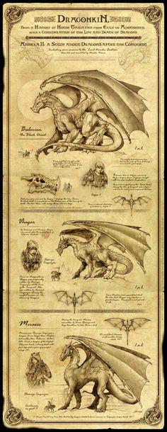 Balerion the Black Dread, Vhagar, and Meraxes.