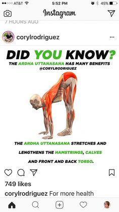 Keeping up with good Yoga Postures Scoliosis Exercises, Stretching Exercises, Body Women, Yoga Fitness, Health Fitness, Yoga Anatomy, Yoga Routine, Yoga Benefits, Asana