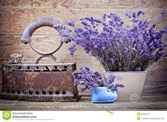 Dry Lavender And Vintage Style Royalty Free Stock Photo - Image: 36908455