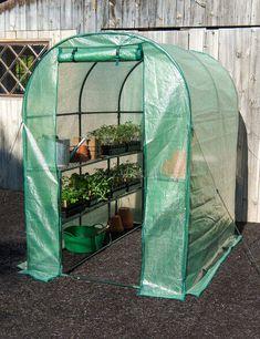 Greenhouse Growing, Small Greenhouse, Greenhouse Gardening, Greenhouse Ideas, Gardening Books, Greenhouse Shelves, Portable Greenhouse, Indoor Greenhouse, Vegetable Gardening