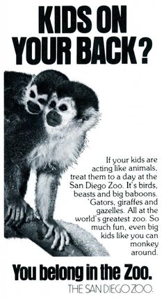 """The big difference a small word can make. In this case the @sandiegozoo uses """"in"""" versus """"at"""" to create a playful tagline: """"You belong in the zoo."""" 1980."""