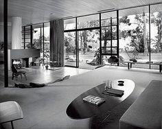 Neutra Designs 1-007