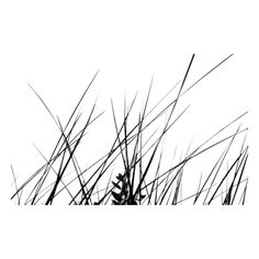 Изображение03.png ❤ liked on Polyvore featuring backgrounds, black and white, grass, plants, nature, effect, texture, filler, quotes and saying