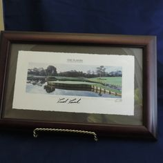 TPC Framed Picture of Hole #17 - $30.00