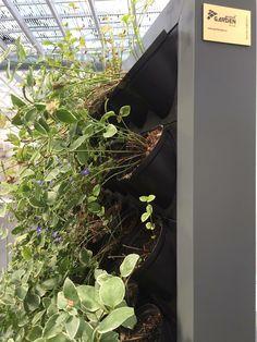 Gardenspot #wawadesign