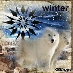 Blingee Wolves | wolf in snow