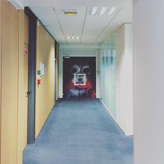 #openspace #corridor #flyingdog