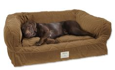 Lounger Deep Dish Dog Bed / Large dogs 60-120 lbs.