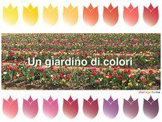 Un giardino di colori - The Color for Me