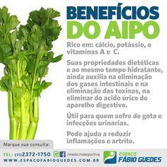 Benefícios do Aipo #aipo #verduras #alimentacao #dieta