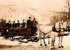 #Aspen, Colorado historic photo. Aspen Fire Department with horses, circa 1885.