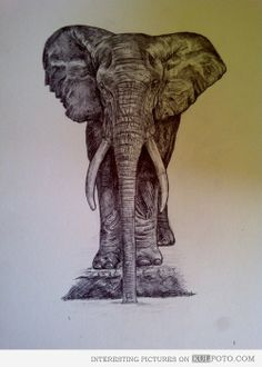 #Elephant #tattoo #design  Modified to hold another one of my tattoos on the arm would be great if I can find the right artist to make the alterations.
