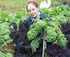 Go Green, Garden, Future, Garten, Future Tense, Lawn And Garden, Gardens, Gardening, Outdoor