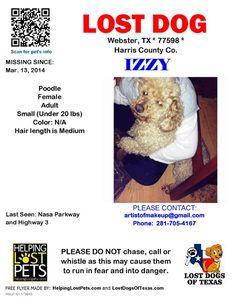 #lostdog #ClearLake #TX