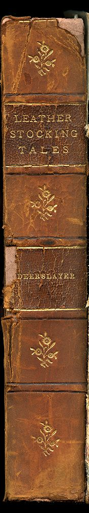 Leatherstocking Tales Deerslayer Enlarged Book Spine Wall Art