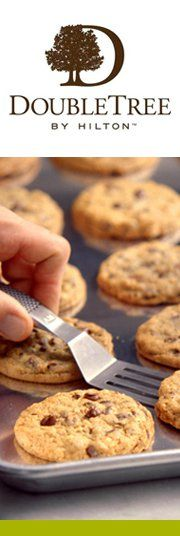 DoubleTree by Hilton gives out approximately chocolate chip cookies each day adding up to more than 21 million cookies annually. Doubletree Cookies, Edinburgh City Centre, Chocolate Chip Cookies, Buffalo, Food And Drink, Events, Spaces, Baking, Breakfast