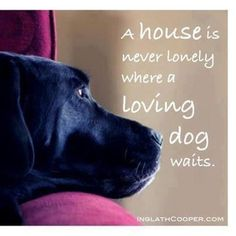 My house is never lonely where a Loving dog waits. ♥   #dog #quote