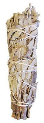 Bâton de Sauge Blanche 20 cm env.  La fumigation est utilisée traditionnellement par les autochtones d'Amérique du nord pour purifier les lieux, les gens et les événements. La sauge est le plus masculin des encens amérindiens. C'est un purificateur très puissant. Sauge blache (Salvia Apiana) à grandes feuilles, récoltés dans les montagnes de la côte californienne. C'est la plus puissante des sauges de notre assortiment. Purifier, Home Scents, Mountains, Manish, Leaves, Places