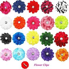 Find amazing Cellot Alligator Hair Clips for Kids Set) - 2 inches Hair Daisy Flower Hairpins for Children, Teen Girls and Women - Cute Boutique Fashion - Silky, Colorful and Strong Hold gator gifts for your gator lover. Great for any occasion! Dog Bows, Baby Bows, Hair Bow Supplies, Ladybug Crafts, Beautiful Flower Designs, Toddler Hair Bows, Small Flowers, Daisy Flowers, Veil Hairstyles