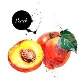 Fruit Stock Photos Images, Royalty Free Fruit Images And Pictures