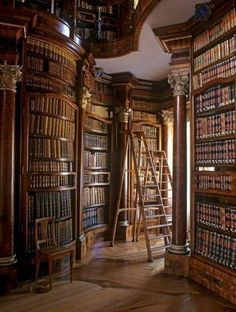 Gorgeous! I would love to get lost in this library daily! #lifegoals