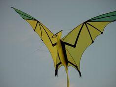 Karl Longbottom, kitemaker and kite designer. Known worldwide for his innovative kite designs and kite workshops. Go Fly A Kite, Kite Flying, Kite Building, Kite Store, Kites For Kids, Kite Designs, Candle In The Wind, Surf Art, Water Tower