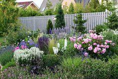 Život v zahradě: Trvalkový záhon Exterior, Landscape, Plants, Flowers, Outdoor, Image, Instagram, Gardening, Outdoors