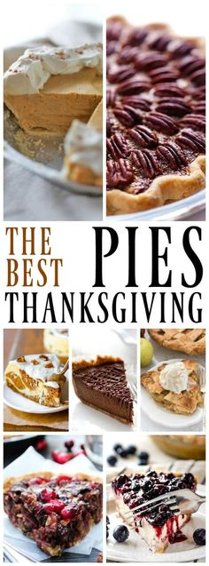 This collection of the Best Thanksgiving Pies have all the classics to the must-haves. From pumpkin to pecan and apple to cherry, we have you covered. #pumpkinpie #pierecipes #holidaypies #holidays #desserts #pietable #desserttime #pecanpie #ThanksgivingRecipes #thanksgivingdinner